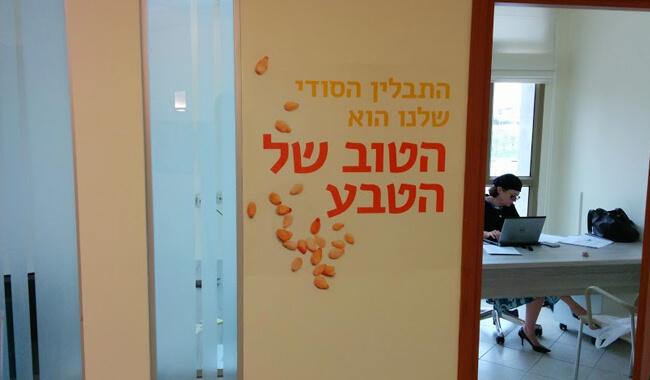 מיתוג משרדים